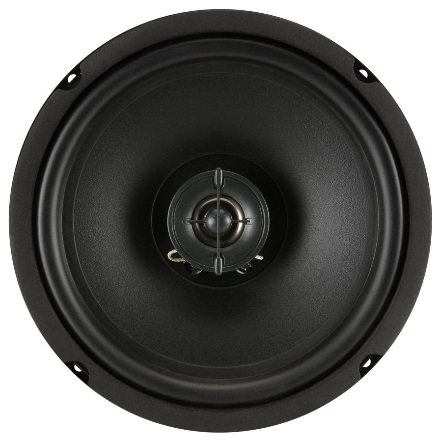 Goldwood GW-8004: 8 inch Coaxial Full Range Speaker-2309